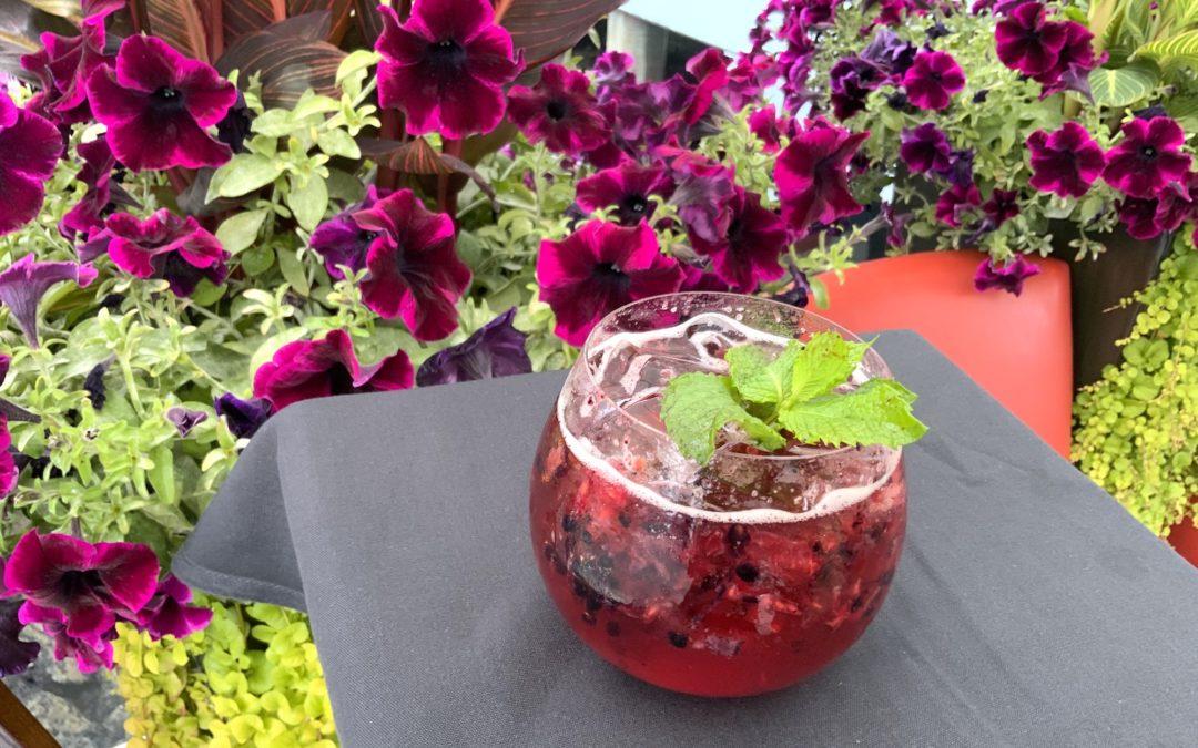 Berry Refreshing Sip/Trip