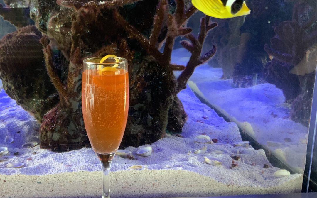 Romance in a Glass